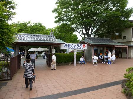 橫須賀しょうぶ園
